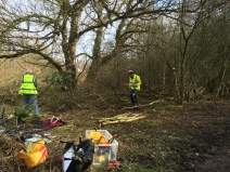 Willow Tit management with Sustrans volunteers